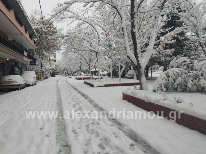 alexandiamou.gr_xionia05.01.19IMG_20190105_090124
