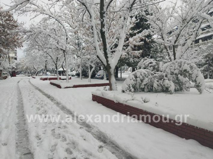 alexandiamou.gr_xionia05.01.19IMG_20190105_090126