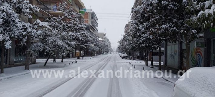 www.alexandriamou.gr_xionia202020147149660552_124248196252569_6859694781328732396_n
