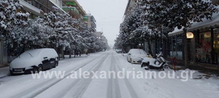 www.alexandriamou.gr_xionia202020147150342714_482140403144323_1940083044484589875_n