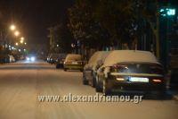 alexandriamou_xionia_alexandreia0005
