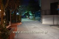 alexandriamou_xionia_alexandreia0010