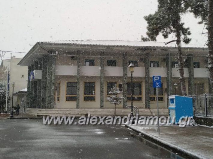 alexandriamou.xionialex2019013