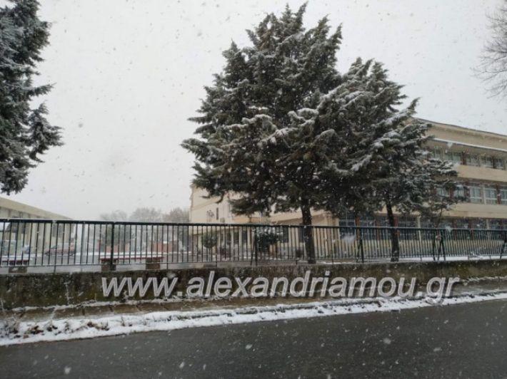 alexandriamou.xionialex2019044