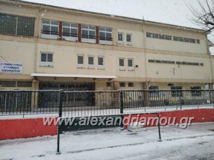 alexandriamou.xionialex2019060