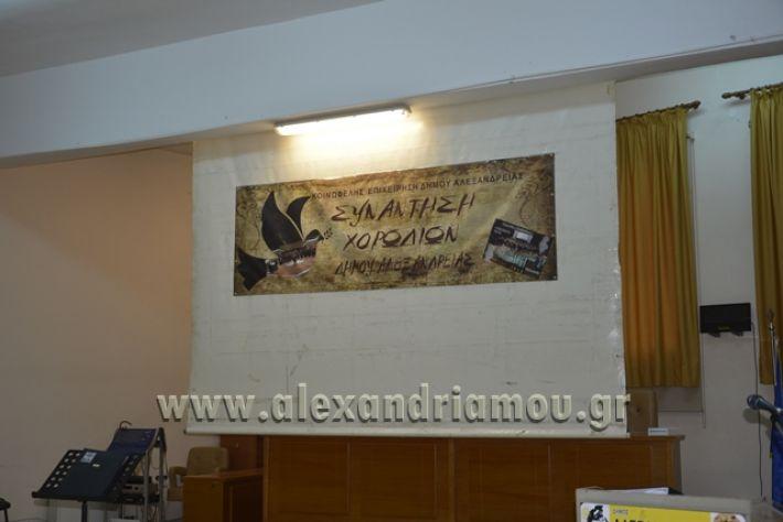 alexandriamou.gr_xorodia0515000