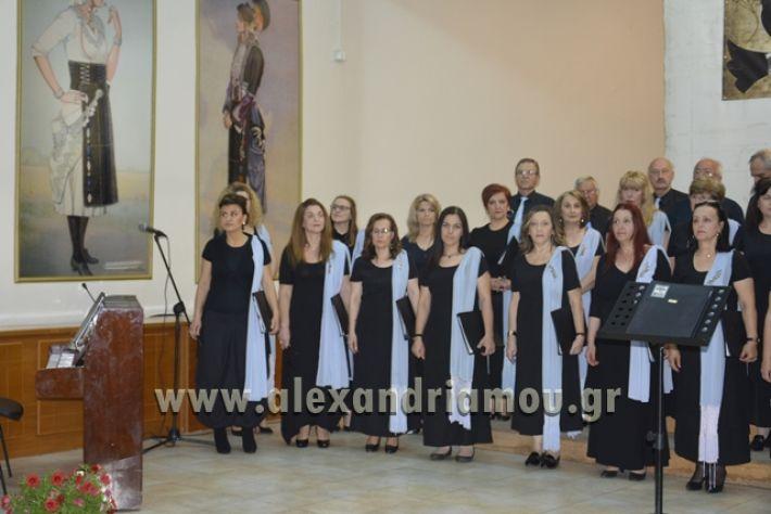 alexandriamou.gr_xorodia0515009