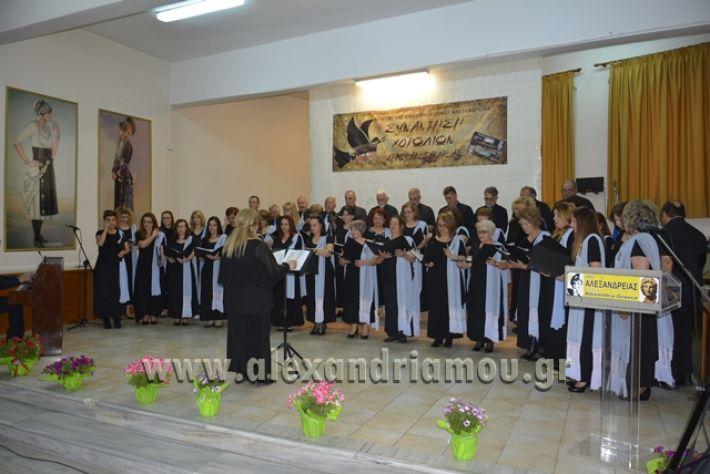 alexandriamou.gr_xorodia0515011