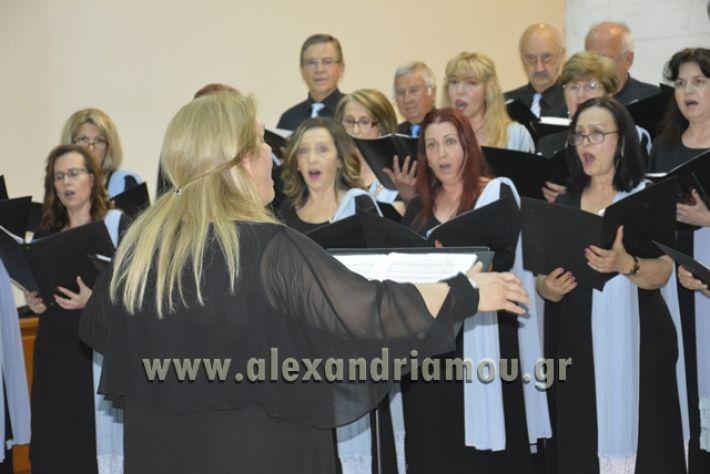 alexandriamou.gr_xorodia0515019