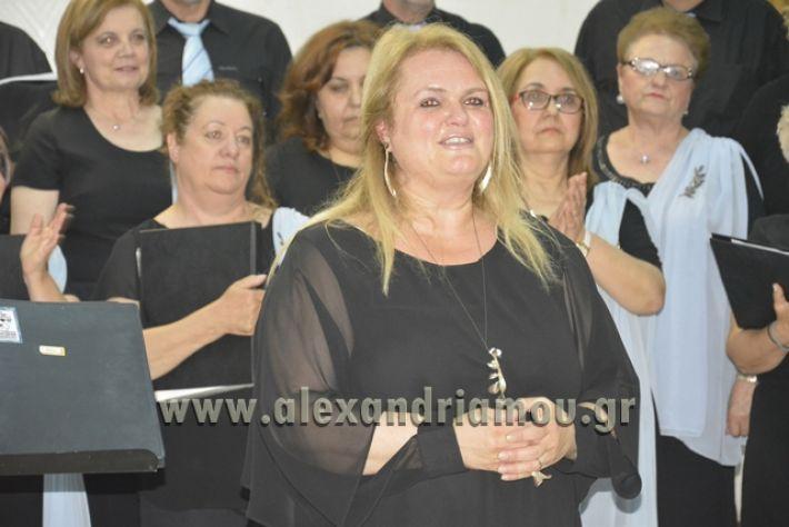 alexandriamou.gr_xorodia0515026