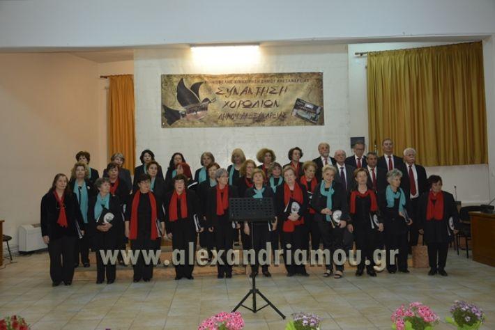 alexandriamou.gr_xorodia0515030