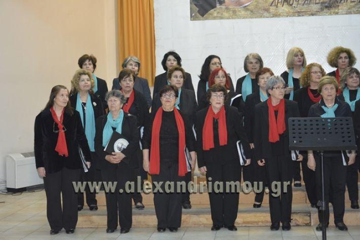 alexandriamou.gr_xorodia0515031