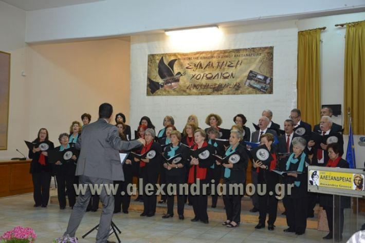 alexandriamou.gr_xorodia0515034