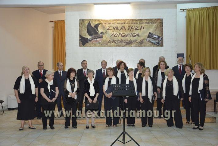 alexandriamou.gr_xorodia0515044