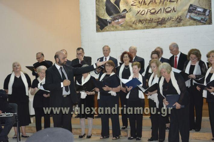 alexandriamou.gr_xorodia0515057