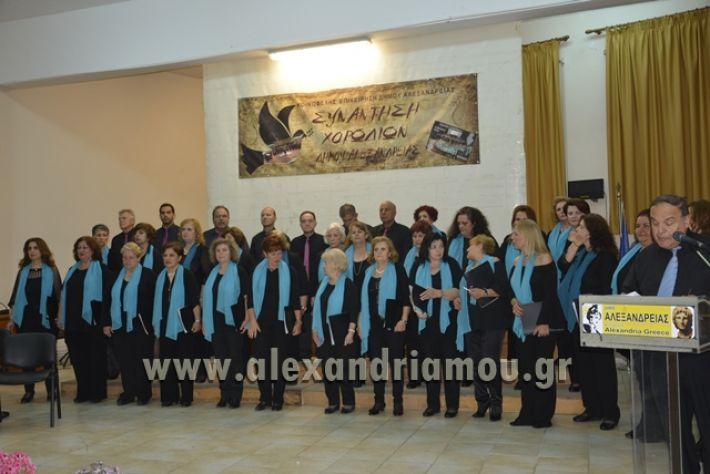 alexandriamou.gr_xorodia0515064