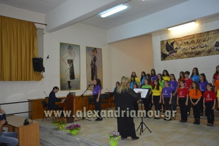 alexandriamou.gr_xorodia0515079