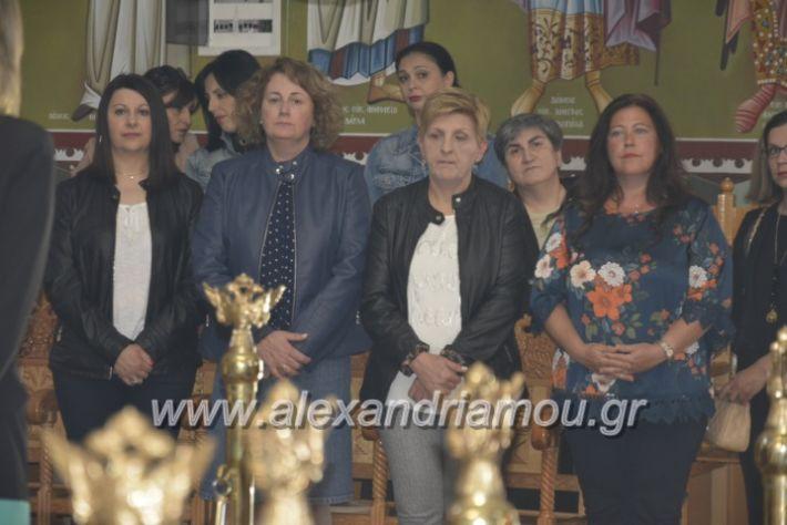 alexandriamou_zoodoxopigibrusakii2019016