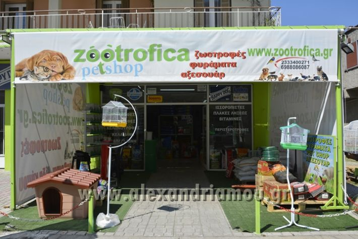 alexandriamou_zootechnika029