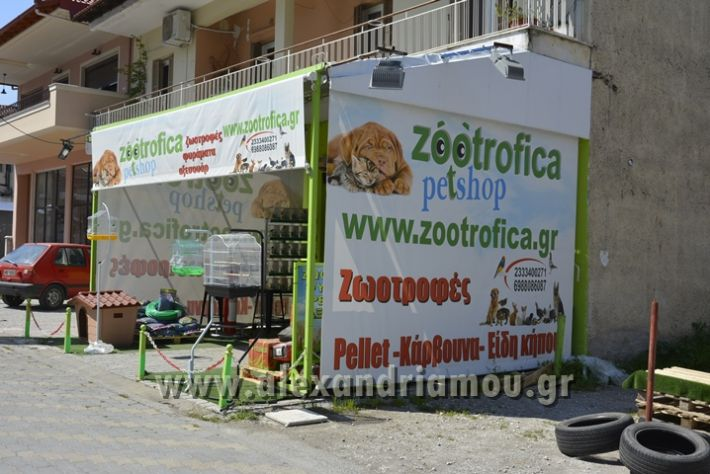 alexandriamou_zootechnika_01